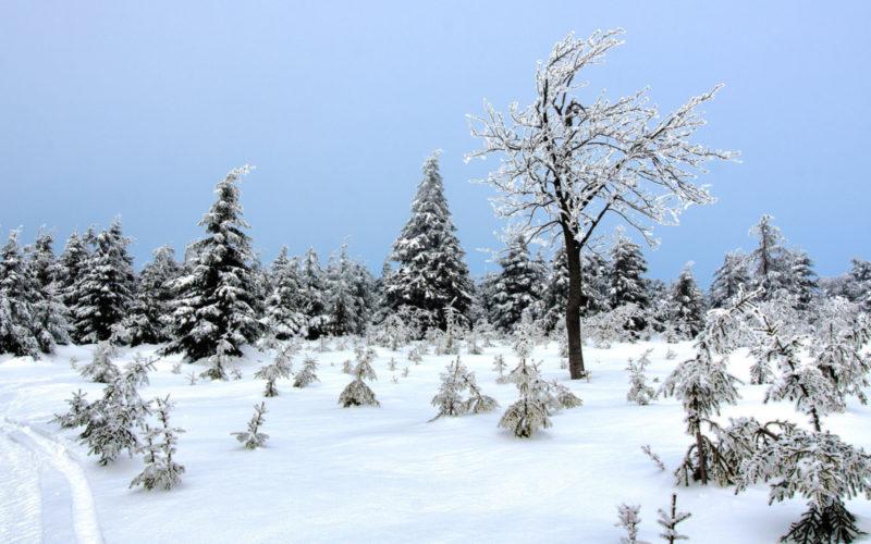 Zdjęcie krajobrazu górskiego zimą