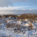 Zdjęcie przedstawia teren inwestycyjny przeznaczony na sprzedaż przez Starostwo Powiatowe w Dzierżoniowie. Teren w zimowej aurze, obrośnięty wysoką trawą i krzakami. W tle budynki zakładów pracy i skład materiałów budowlanych.