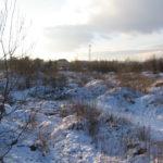 Zdjęcie przedstawia teren inwestycyjny przeznaczony na sprzedaż przez Starostwo Powiatowe w Dzierżoniowie. Teren w zimowej aurze, obrośnięty wysoką trawą i krzakami. W tle budynki i wieża nadajnika telefonii komórkowej.