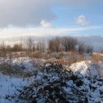 Zdjęcie przedstawia teren inwestycyjny przeznaczony na sprzedaż przez Starostwo Powiatowe w Dzierżoniowie. Teren w zimowej aurze, obrośnięty wysoką trawą i krzakami.