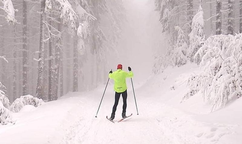 Zdjęcie przedstawiające narciarza biegowego na trasie biegowej w ośniezonym lesie, ubranego w jaskrawo zielona kurtkę, czarne spornie i czerwoną czapkę z kijkami narciarskimi w dłoniach, z uniesionymi ramionami.